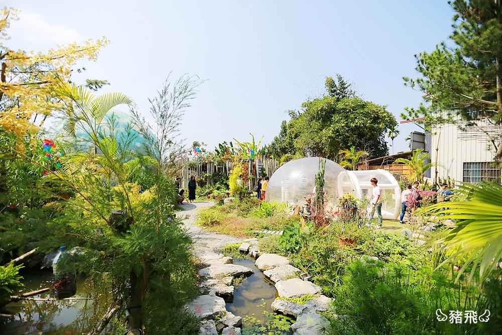 【埔里景點】多肉秘境~山城裡的夢幻IG打卡點!綠意盎然的花園秘境,快來和大型泡泡屋、藍色地球拍照