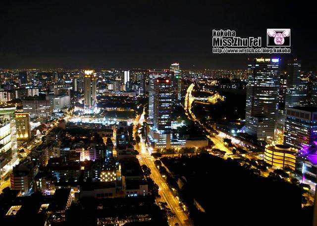 【新加坡】三天兩夜自助旅遊~瑞士史丹福酒店(swiss hotel the STAMFORD)超美夜景