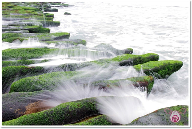 【台北旅遊】老梅石槽~沙灘上整齊排列的海苔耶