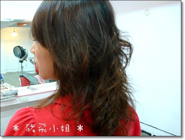 【髮型】台中new face。250元搶救不捲的髮型