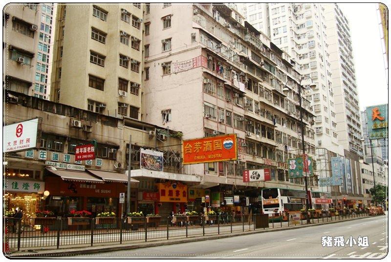 香港北角雞蛋仔 (14)