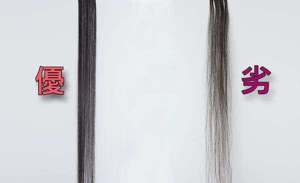 髮片-比較